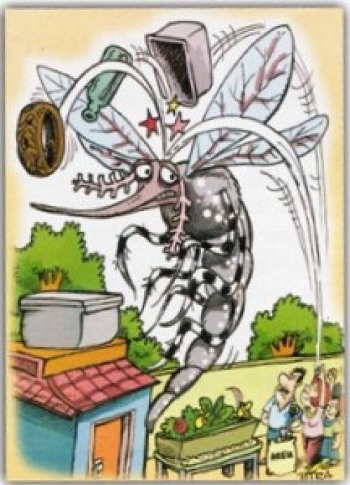 Dengue: faça a sua parte